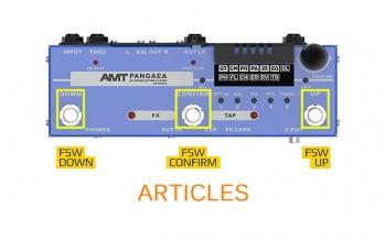 AMT Pangaea CP-100FX: Возможности по управлению прибором в реальном времени