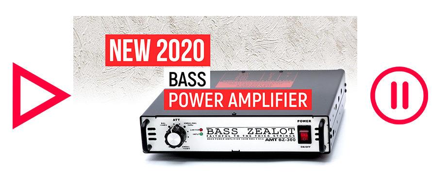 AMT Bass ZEALOT BZ-300 (brief overview)